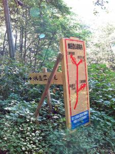 中尾温泉郷から舗装された林道を登っていくと、焼岳へ向かう登山道の入口が見えてくる