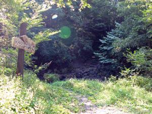 焼岳の中尾側登山道