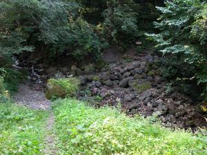 中尾側の登山口は最初に小さい沢を渡る、後は展望のない尾根をひたすら登る