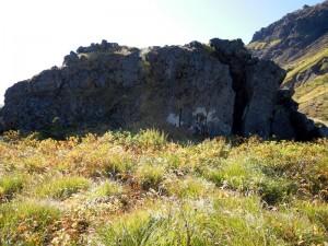焼岳・旧中尾峠にある「王蟲の化石」