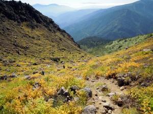 焼岳山頂付近からみた中ノ湯コース全体
