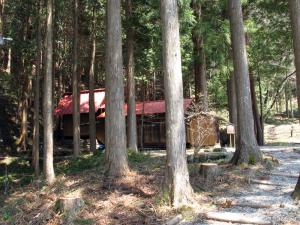 静かな中尾白山神社。散歩にちょうどよい